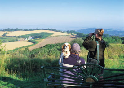 Explore the vast reaching views of The Cotswolds
